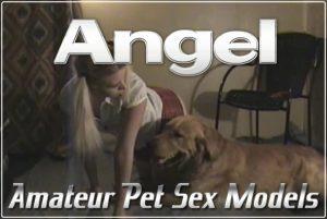 Angel - Models Amator Zoophilia