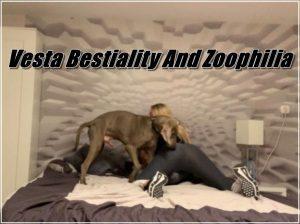 Vesta Bestiality And Zoophilia