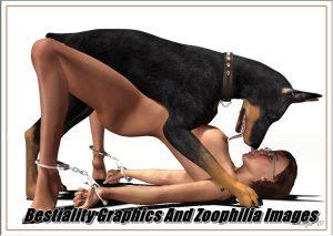 Zoophili XNXX Animal