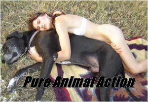 Pure Animal Action - Extreme Bestiality And Zoophilia Porn Movies