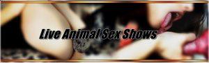 Live AnimalSex Shows