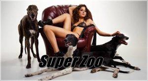 Super Zoo - Full Animal Sex Movies