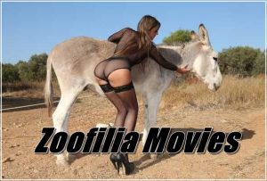Full Animal Sex Movies And Zoo Porn Films