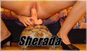 Sherada